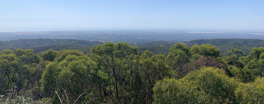 Omada - South Australian Growth