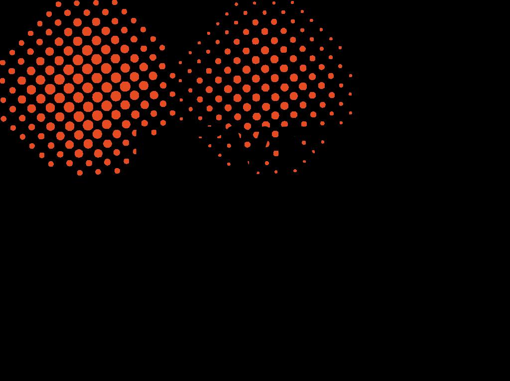 LXRP-logo